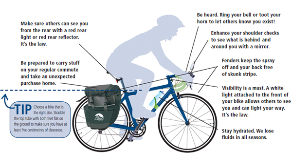Replace Pedal Bicycle